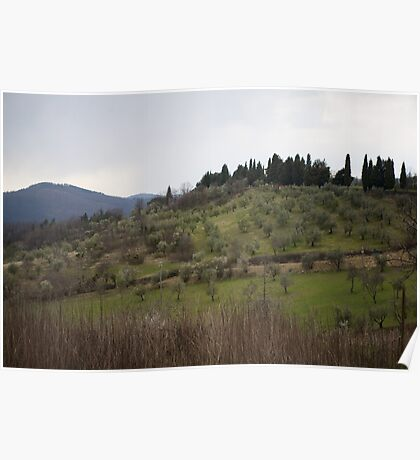 Olive Tree Hills Poster
