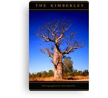 Boab Tree, The Kimberley, Australia Canvas Print