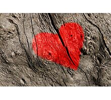 Red heart on the tree bark. Photographic Print