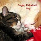 Valentine Kitties by Veronica Schultz