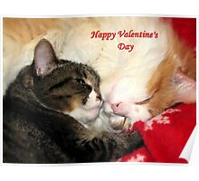 Valentine Kitties Poster