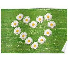 Flower heart from white daisy. Poster