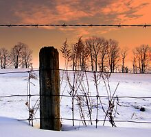 """""""don't fence me in""""... by Russ Styles"""