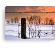 """don't fence me in""... Canvas Print"