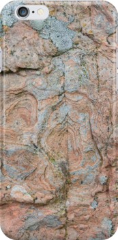 Orkney sandstone and lichen by Morag Anderson