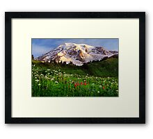 Rainier Wildflowers Framed Print
