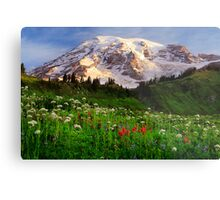 Rainier Wildflowers Metal Print