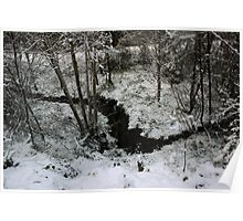 Winter Stream - Glenabo Woods, Cork, Ireland Poster