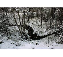 Winter Stream - Glenabo Woods, Cork, Ireland Photographic Print