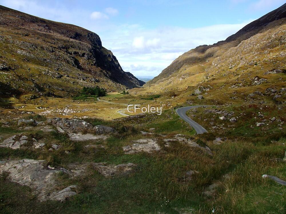 Road through the Gap of Dunloe, Killarney, Kerry, Ireland by CFoley