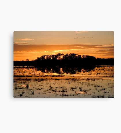 Williamtown Sun Rise - New South Wales - Australia Canvas Print