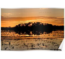Williamtown Sun Rise - New South Wales - Australia Poster