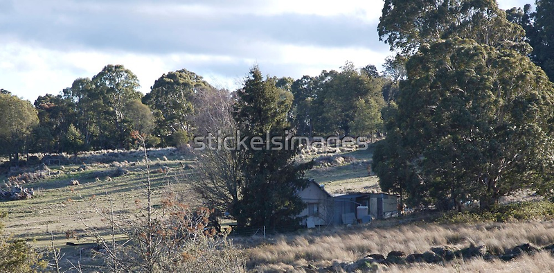 landscapes #188, house among highland grasses by stickelsimages