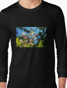 Pink Flowers in the Light Long Sleeve T-Shirt