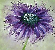 Small Cosmos by Lynsey Cleaver