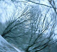 Wind Series III by Lena Weiss