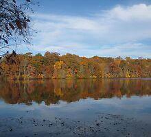 Blue and orange - Blydenburgh Lake, Smithtown, NY by Angelsbythesea