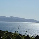 view from Elgol on the SW coast of the Isle of Skye by BronReid