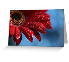 Blue Red Delicious Greeting Card
