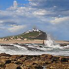 Nobbys across the Cowrie Hole - Newcastle NSW by Bev Woodman