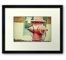 Addiction to Firehydrants Framed Print