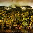 Autumn Mists by Karl Williams