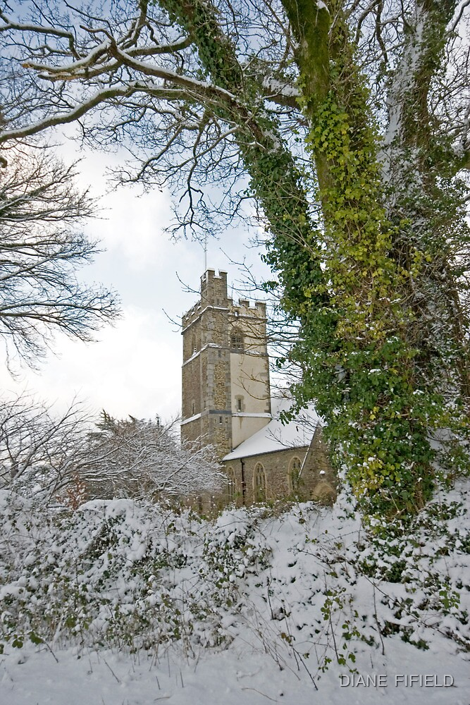 Yelverton Church by DIANE  FIFIELD