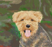 Tucker, the Welsh Terror by Carole Boyd