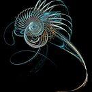 Fractal Shell by Ann Garrett