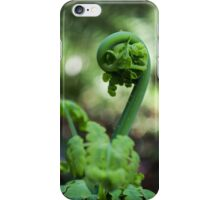 Fern Frond Macro iPhone Case/Skin