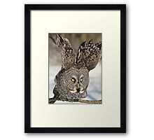 Stand back and watch me go Framed Print