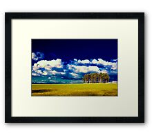 Trees in Summer Framed Print