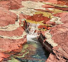 Waterless Red Rock Canyon by Vickie Emms