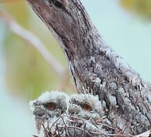 Momma Bird with Babies by Pam Moore