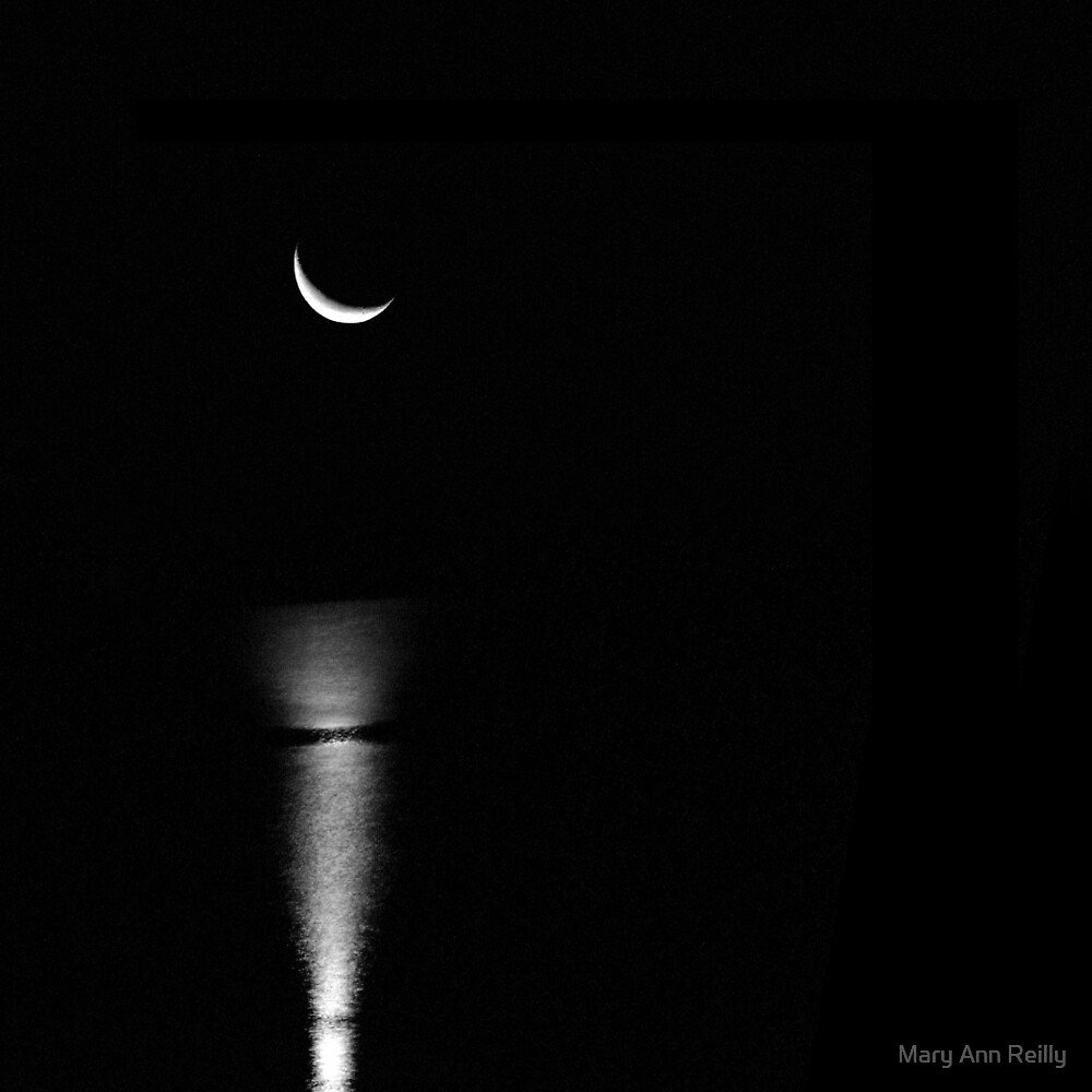 Waning Crescent  by Mary Ann Reilly