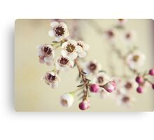 tiny : simple : blooms (on white) Canvas Print