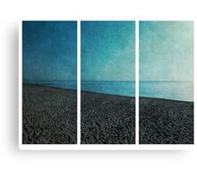 Three Parts Canvas Print