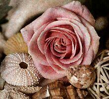 Rustic Rose by Carolyn Staut
