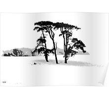 Beddingham Trees Poster