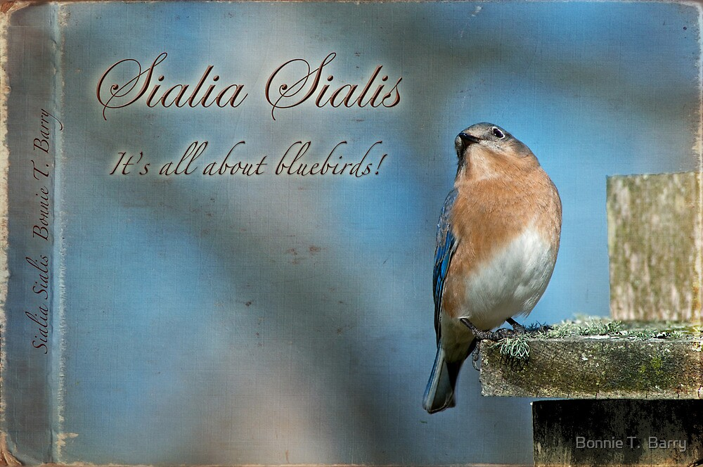 Sialia Sialis . . . It's all about bluebirds by Bonnie T.  Barry