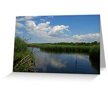 Brown's Creek on a summer day Greeting Card
