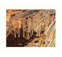 Winter Wonderland 17 Art Print