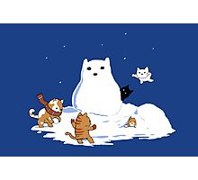Snowcat Photographic Print