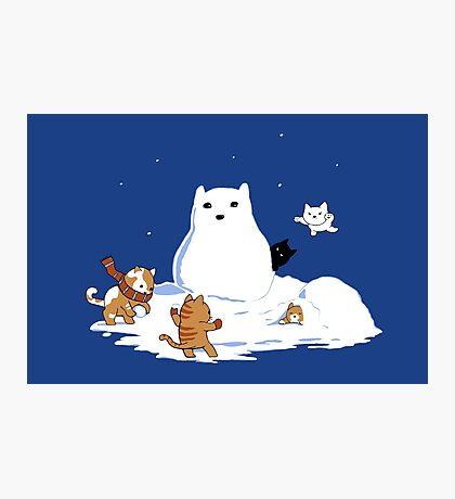 Snowcat Photographic Print