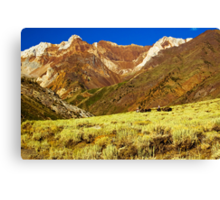 Pack Train, McGee Canyon Canvas Print