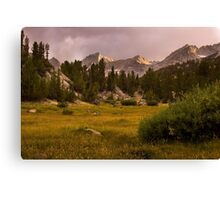 Meadows and Mountains Canvas Print