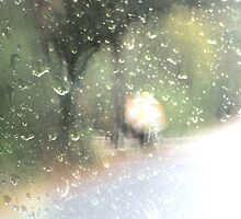 rainy day by leapdaybride