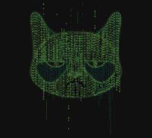 Binary Grump by manikx