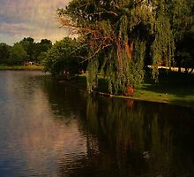 The Willow by Lyle Hatch
