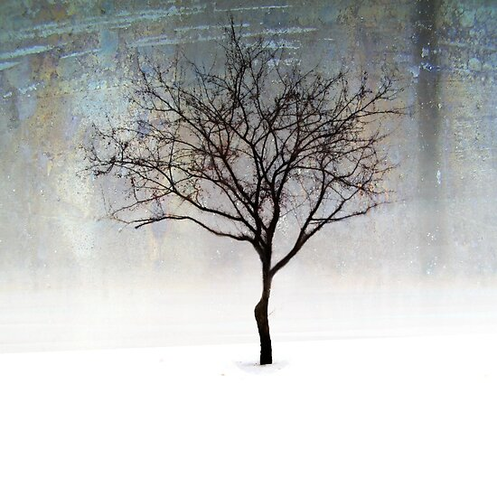 A lone Tree by Angela King-Jones